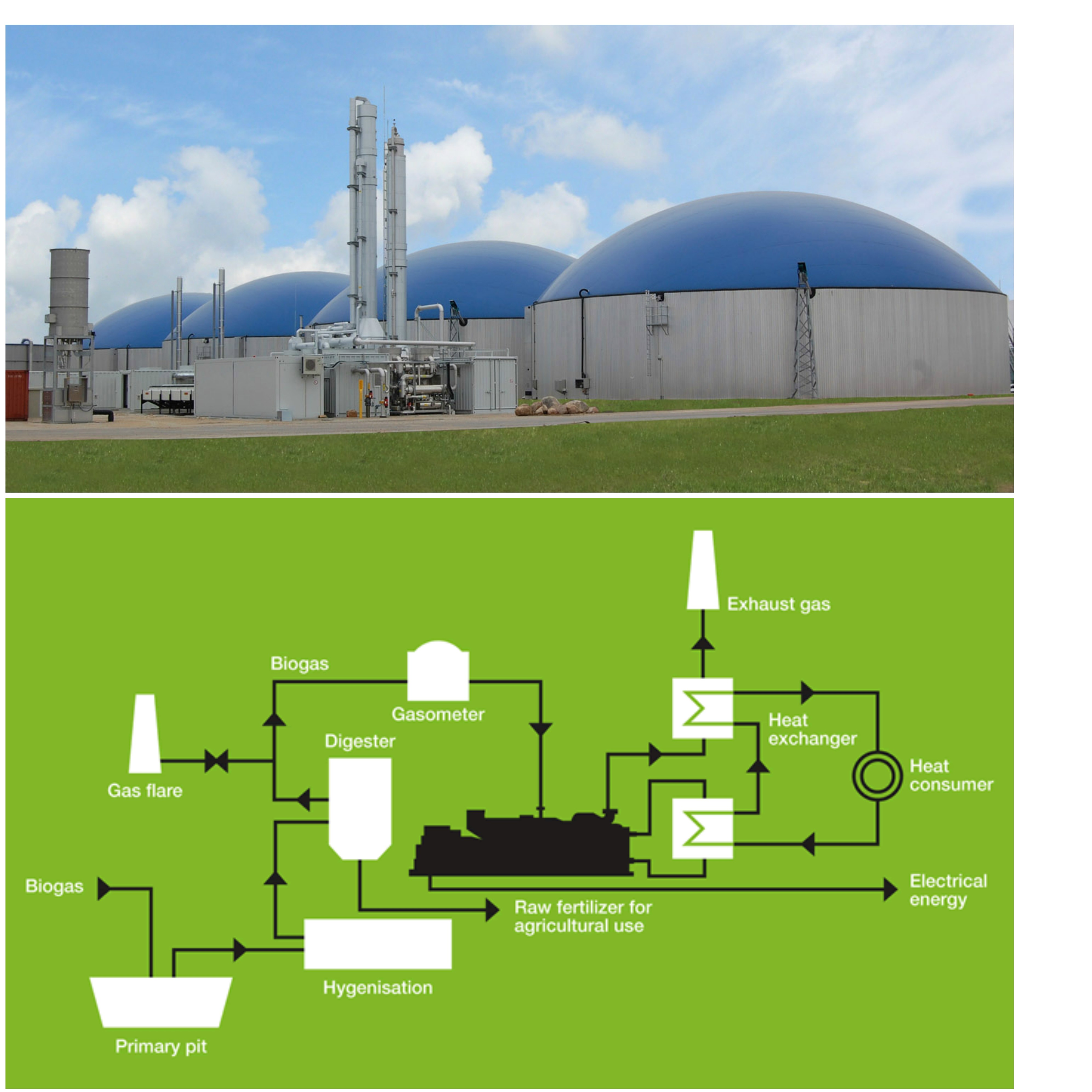 Youth Citizen Entrepreneurship Competition Biogas Large Plant Bio Gas Diagram Srv Www Vhosts User3101 Html