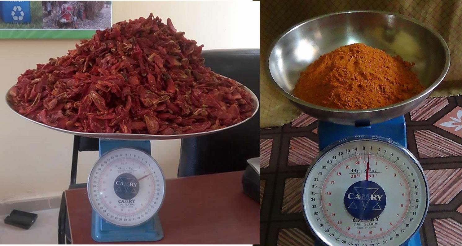 /srv/www/vhosts/user3101/html/entrepreneurship-campus.org/wp-content/uploads/2017/07/Dried-tomatoes-vs-powder.jpg