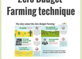 Zero Budget Natural Farming Information