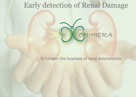 Genius in Healthcare: Non-invasive, point of care sensor for early detection of kidney damage