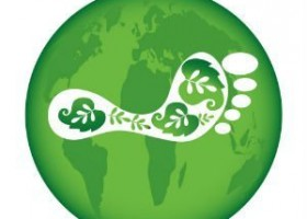 Eco Foot Print Free Travel