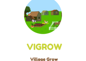VIGROW: STRATEGY FOR DEVELOPING RURAL CREATIVE INDUSTRY THROUGH E-COMMERCE IN INDONESIA