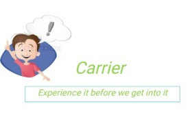 Carrier(Experience it before getting into it)