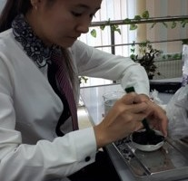BioFSM (Biofuel of Sheep Manure)