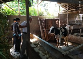 Cow Revolving Fund (CRF) to Empower Cow Farmers