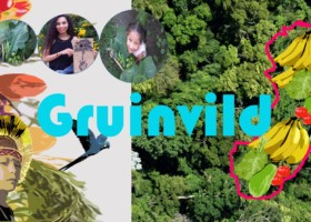 Gruinvild: Sustainable Agriculture