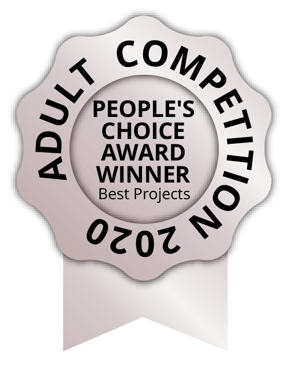 People choice best projects adults