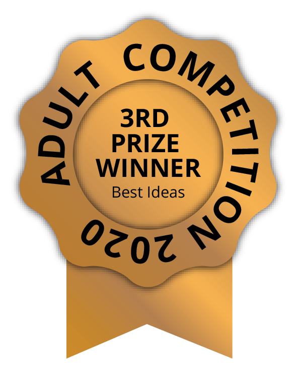 3 prize best ideas adult