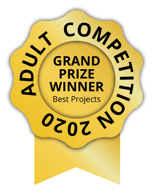 1 p best projects adult