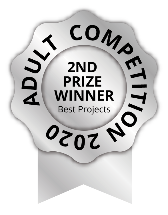 2 p best projects adult