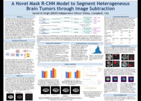 A Novel Mask R-CNN Model to Segment Heterogeneous Brain Tumors through Image Subtraction