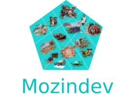 """MozInDev - An online real-time """"One-stop-sharing and access"""" of development knowledge"""