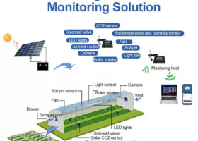 Golden_Farm,  the Internet of Things to feed the world